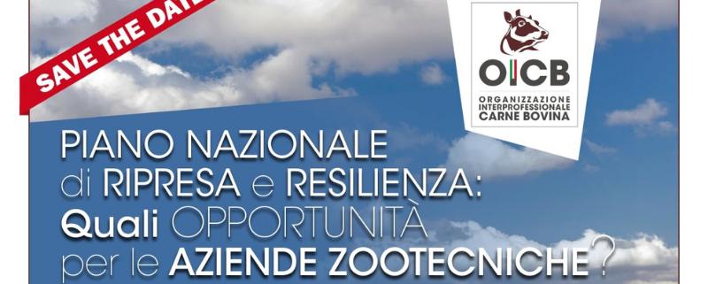 Piano Nazionale di Ripresa e Resilienza quali opportunità per le aziende zootecniche